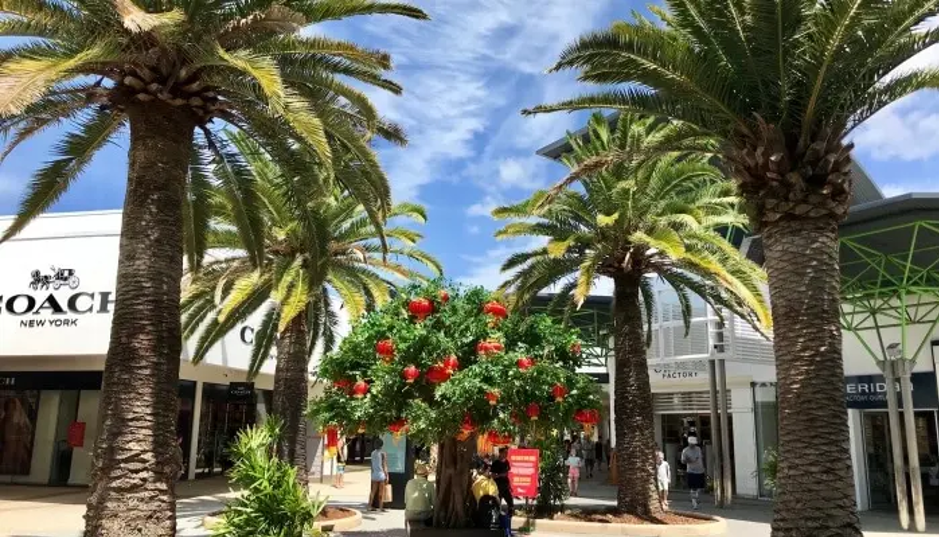 Introduce Exotic Plants To Your Shopping Mall Landscape