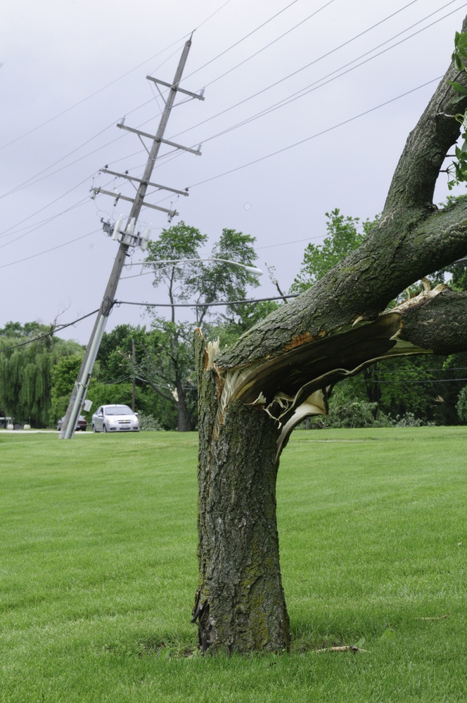 Damage from severe storm cracked tree and tilted power pole on lawn of public school about 36 hours after a tornado touched down on the first day of summer in Downers Grove, Illinois, 2011