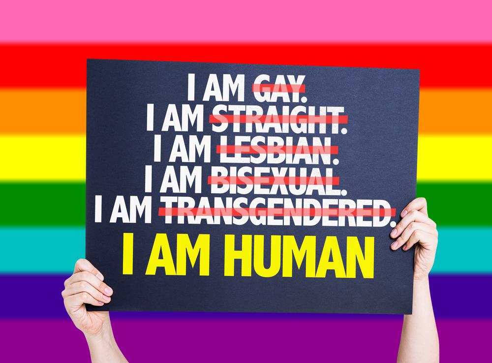 I am GayStraightLesbianBisexualTrans I am Human card with rainbow background